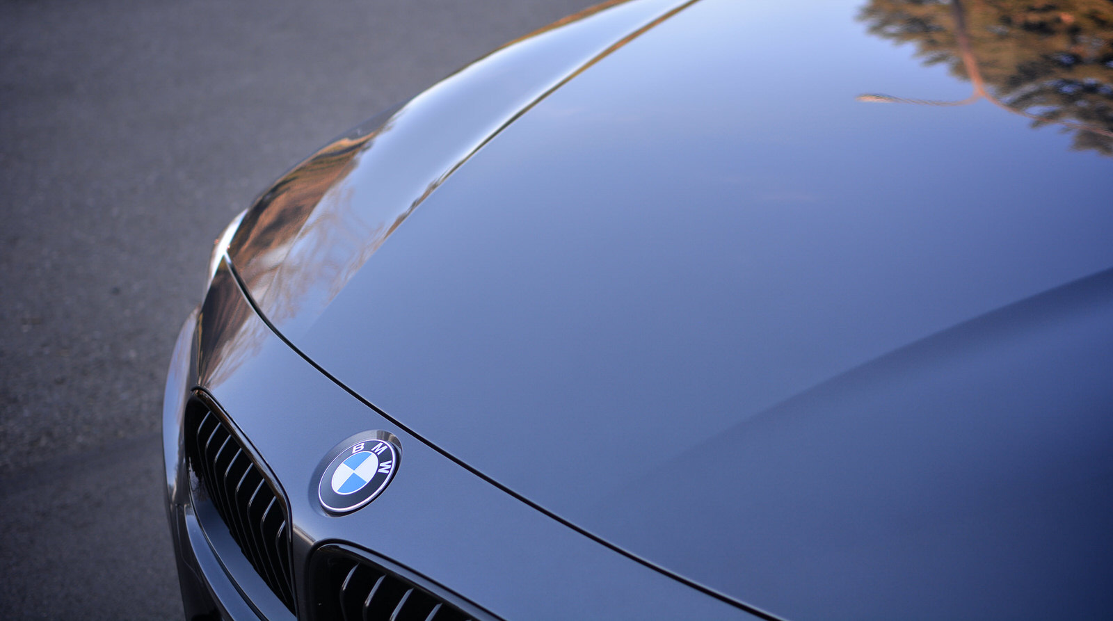 Should You Get Paint Protection On A New Car
